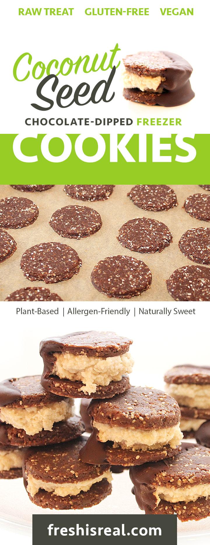 Fun-to-make Raw Vegan Coconut Seed Chocolate-Dipped Freezer Cookies | Chantal | freshisreal.com