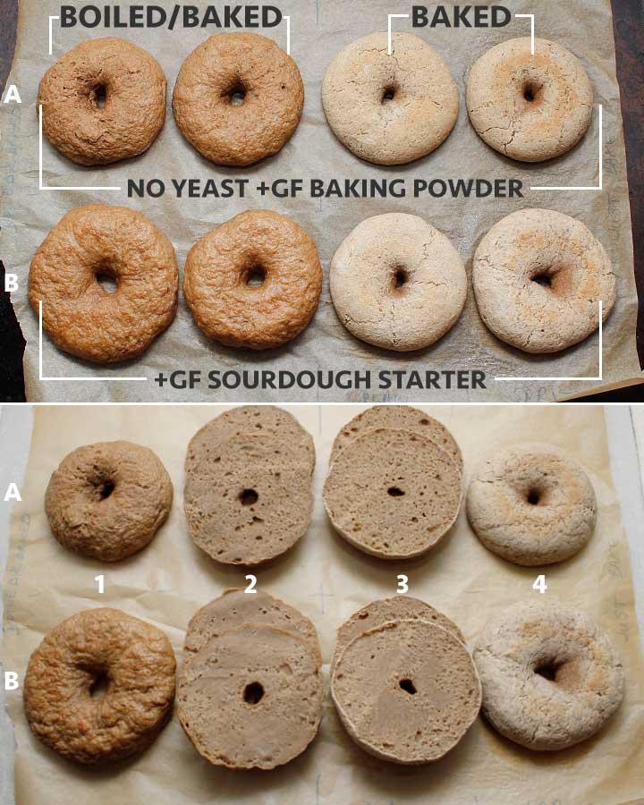 Gluten-Free Vegan Bagels tested without active yeast or with some gluten-free sourdough starter. Some bagels were boild and baked and some were baked only.