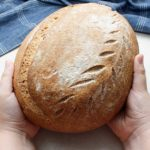Little hands holding a stunning wild yeast bread loaf boule