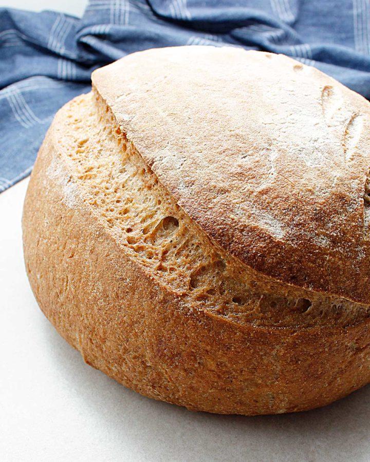 Side view of gorgeous gluten-free wild yeast bread boule