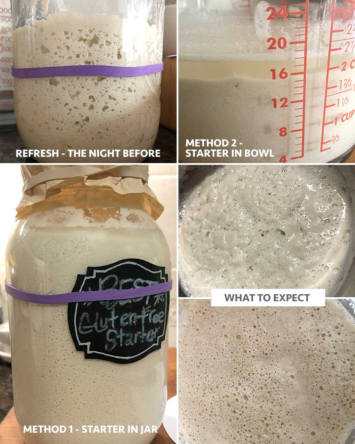 Steps in refreshing a gluten-free sourdough starter