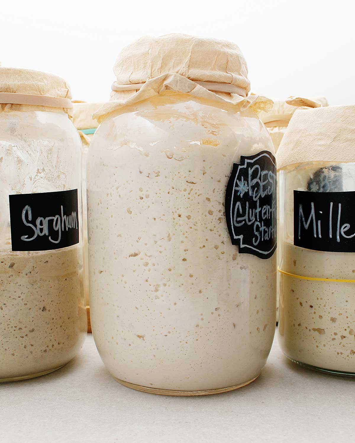 Gluten-free sourdough starters made with sorghum, brown rice and millet flour