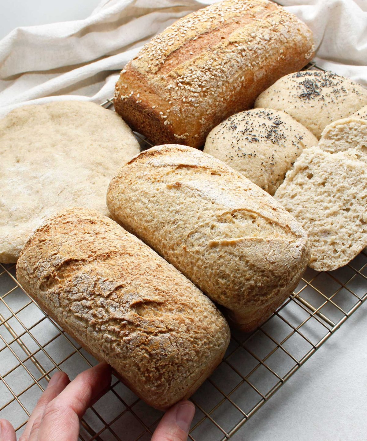 A display of gluten-free vegan bread (loaves, rolls, pizza crust) all prepared with one yeasted dough.
