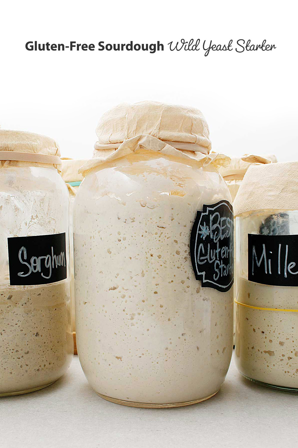 Three jar of active bubbly GF Sourdough Starter ready to be used in a sourdough bread recipe.