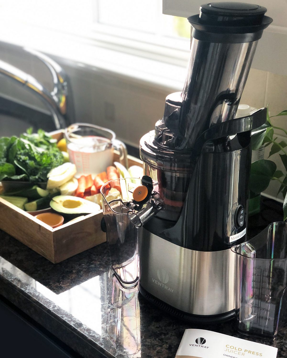 Small Ventray Juicer 408 for easy vegetable and fruit juice extraction